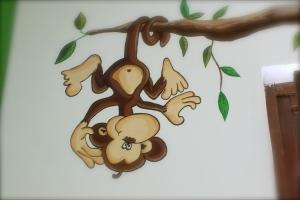 Scimmietta maschio